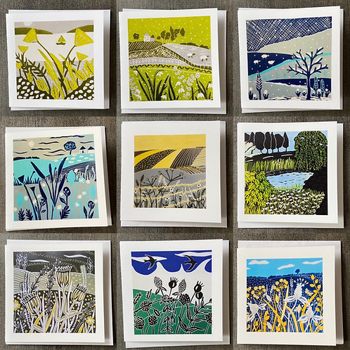Pack of 9 Greetings cards (Mixed pack C) by Sue Collins