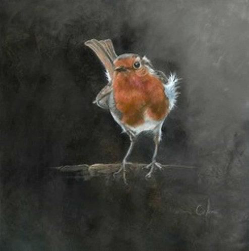 Ruffled Robin by Nicola Colbran