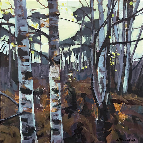 Twilight Birch by Andrew Milne