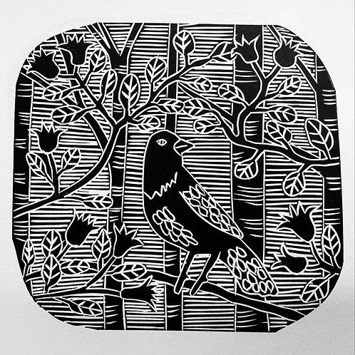 Song Sparrow by Sue Collins
