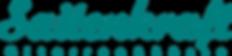 HP Logo Petrol  schrift.png
