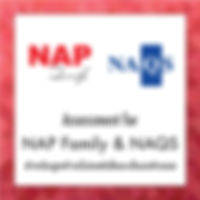 Assessment for NAP Family Customer