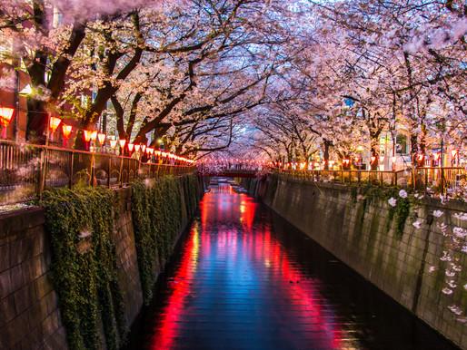 ข้อมูลท่องเที่ยวประเทศญี่ปุ่น