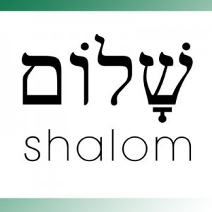 Shalom - The Way Things are Supposed to Be