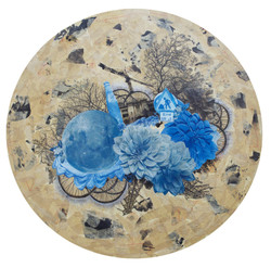 夢菊 Dream of the Chrysanthemum   2016