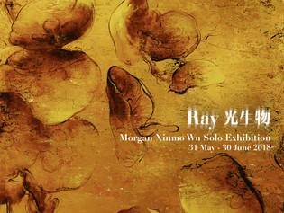 Ray - Morgan Xinmo Wu Solo Exhibition