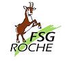 FSG.png