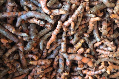 Organic Turmeric有機黃薑(100g)