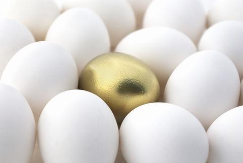 Gold egg surrounded by white eggs.jpg