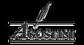 Logo_Agostini_Black.png
