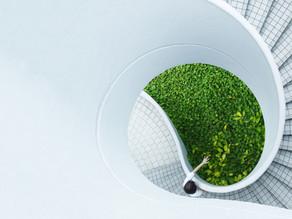 Nachhaltigkeit – bei DLA Piper nicht nur ein Schlagwort, sondern gelebte Realität