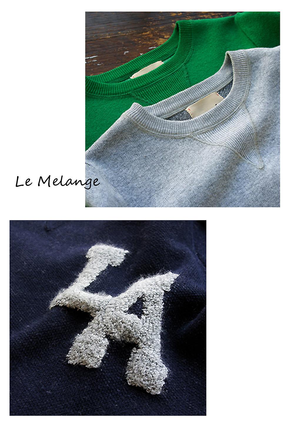 LeM11.jpg