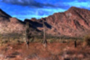 tucson mountains .jpg