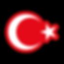 Flag_of_Turkey.svg.png