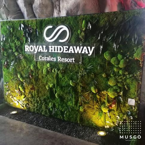 Photocall Royal Hideaway Corales Resort