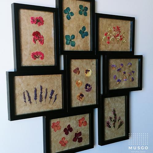 Collage Flores - Colección Primavera