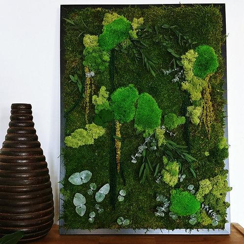 Nature Amaranthus