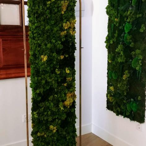 Proyecto Finca Verde