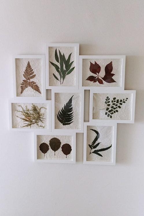 Collage Hojas - Colección Nature