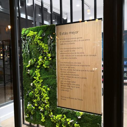 Jardín Vertical preservado para Escaparate Farmacia