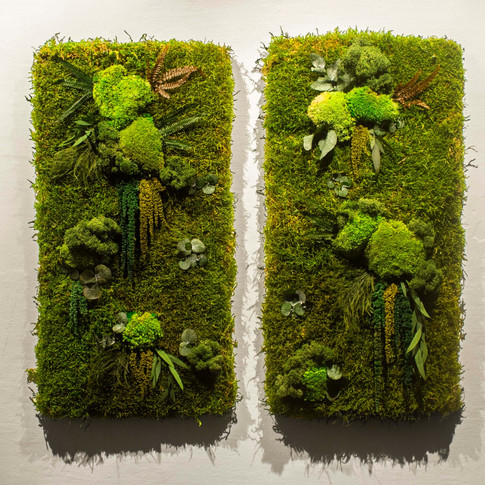 Nature Twins