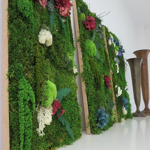 Nature Hortensias