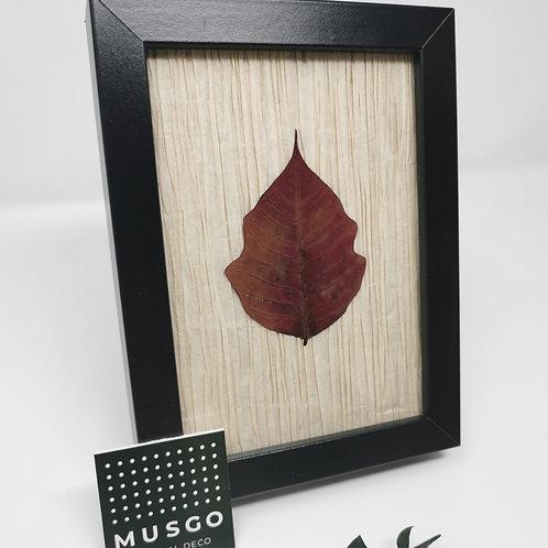 Cuadro hojas mini