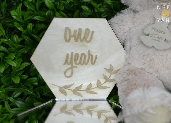 Wooden Monthly Baby Milestone Hexagon Plaques
