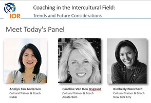 Co-leading Panel Discussion for Cultural Trainers