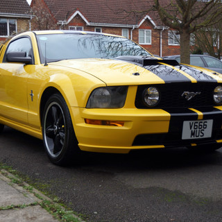 Mustang on my Drive