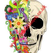 half colour sugar skull.jpg