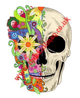 half colour sugar skull.jpg