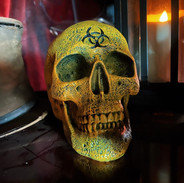 Zombie Skull £22