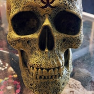 Biohazard skull £22