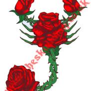 scorpion rose.jpg