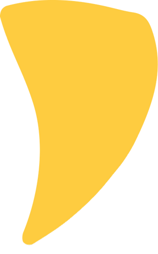 yellow-top_edited.png