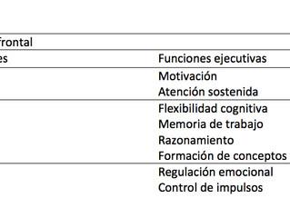 Entrenamiento de funciones ejecutivas en el trastorno por déficit de atención/hiperactividad