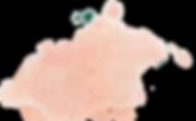 Логотип фон.png