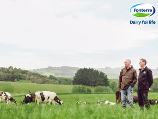 Turning Around the Fonterra Disaster - Less is More and Back to Basics