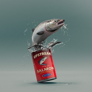 salmon upstream01v1.jpg