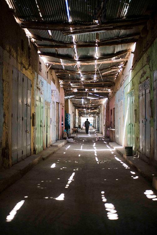 DSC01420_light.jpg