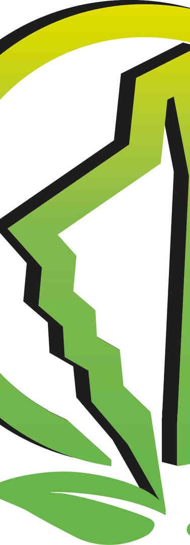 Logo ECO BOIS