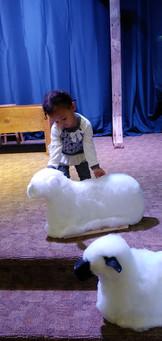 Alijah pets the manger animals