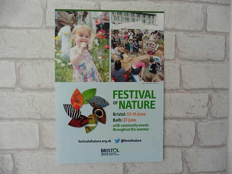 Large Printed Poster A0