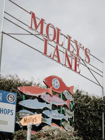 Molly's Lane