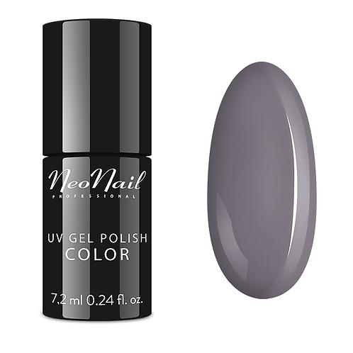 Neonail Silver Grey