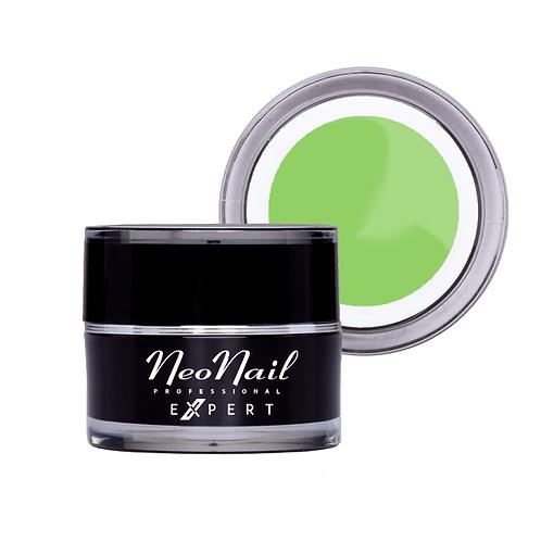 NN Expert Elastic Geeli - Light Green