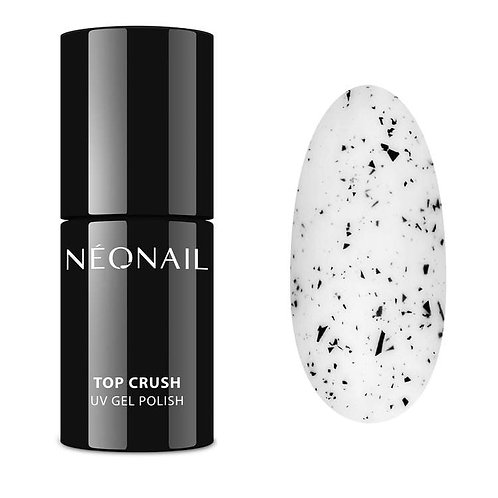 NN Expert - Top Crush