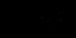 LogoMacabeaSemFundo.png