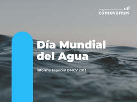 Informe BMCV Día del Agua 2013